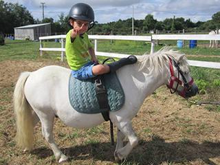 poney ile d'oleron